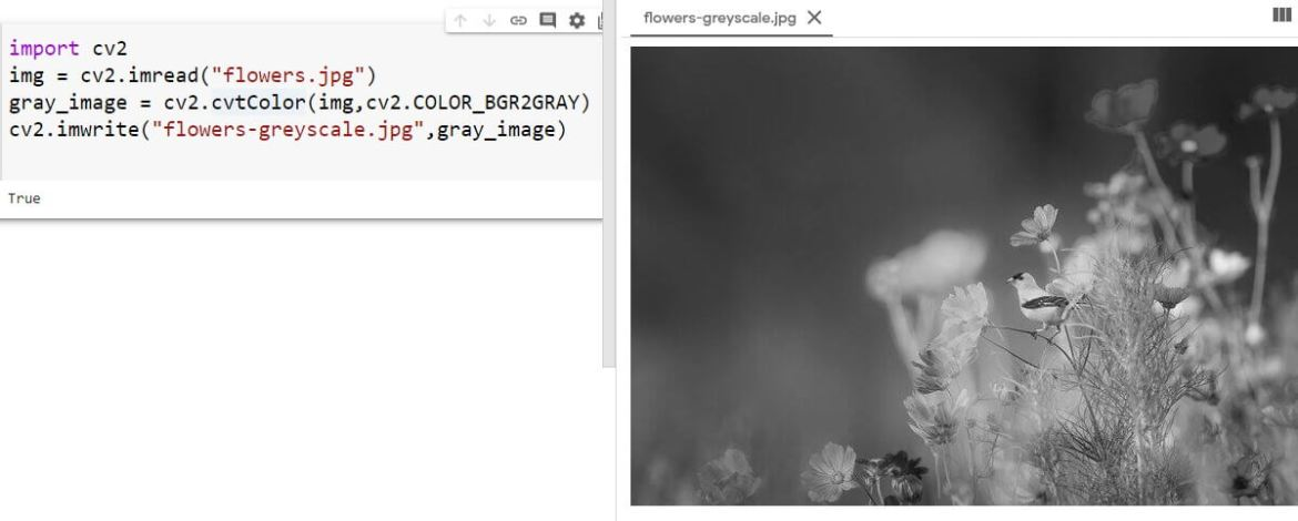 Converting the image to grayscale and saving it