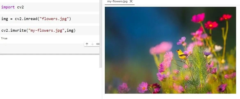 Renaming the image file name using imwrite() method