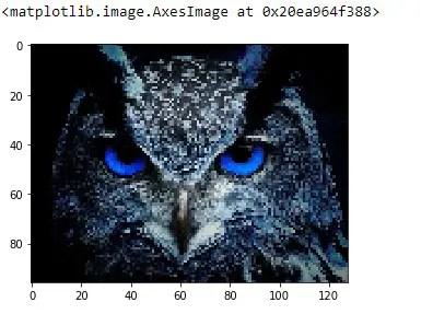 Resized and Scaled Image