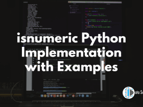 isnumeric Python Implementation with Examples