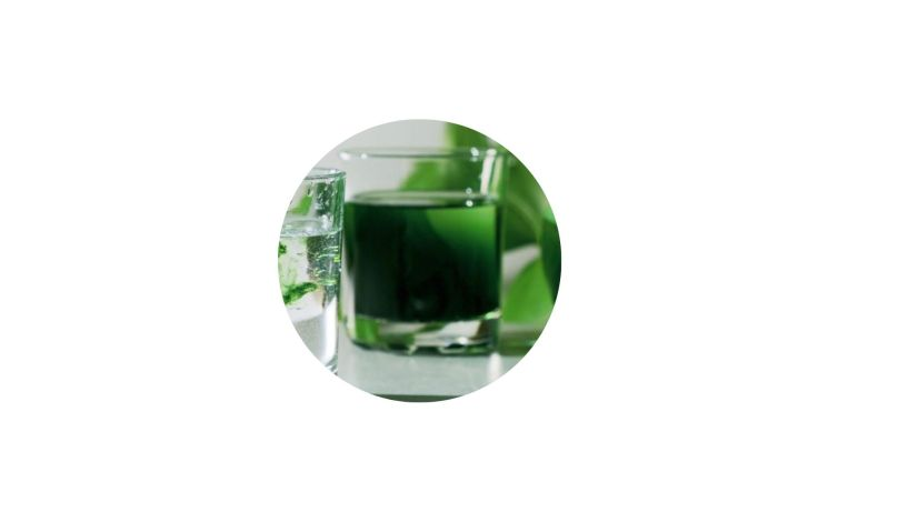 Essential CBD Extract Ingredients Chlorophyll