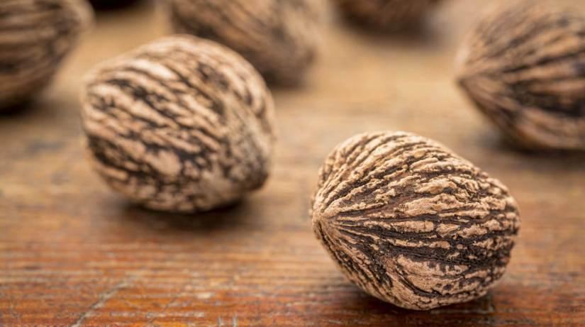 Acidaburn Ingredient Walnut (black)