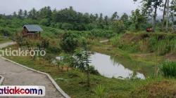 bekas lokasi tambang di Padangpariaman