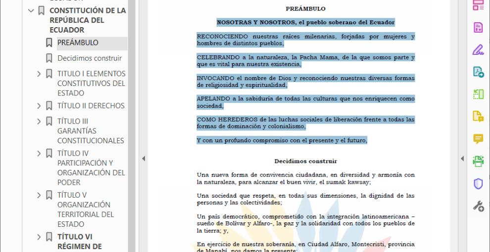 La constitución de la República del Ecuador