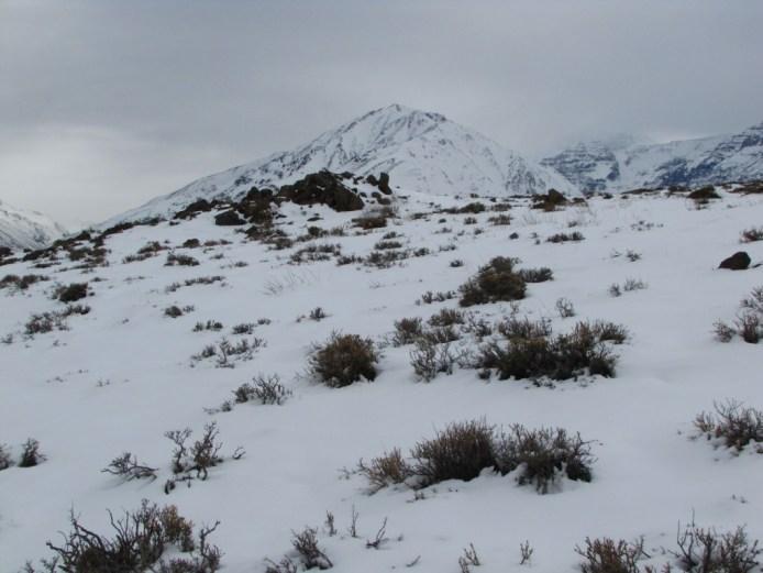 cerro medio cumbre