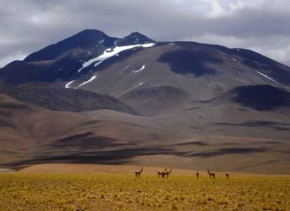 Expedición Volcán Llullaillaco, DAV-AndesContact / 12 al 20 de septiembre de 2015