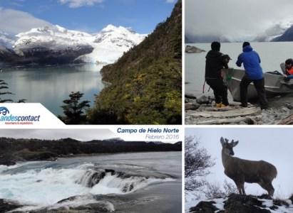 Expedición Hielo Patagónico – Campo de Hielo Norte – Glaciar Leones / 17-28 febrero de 2016