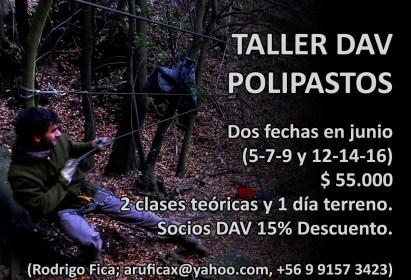 Taller de Polipastos Junio 2019 Rodrigo Fica