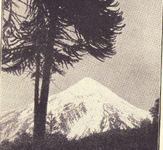 El Primer Ascenso del Lanín (3740 m) – Traducción del artículo publicado en 1931