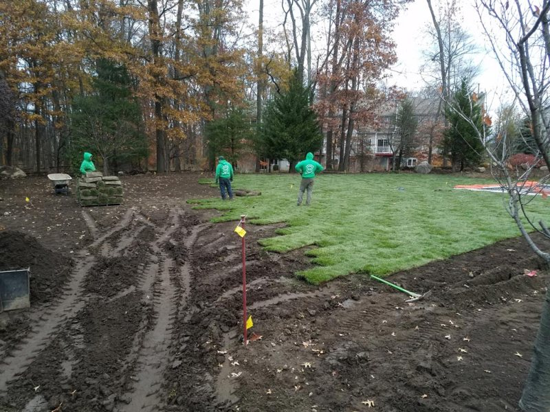 Sod Installation 5