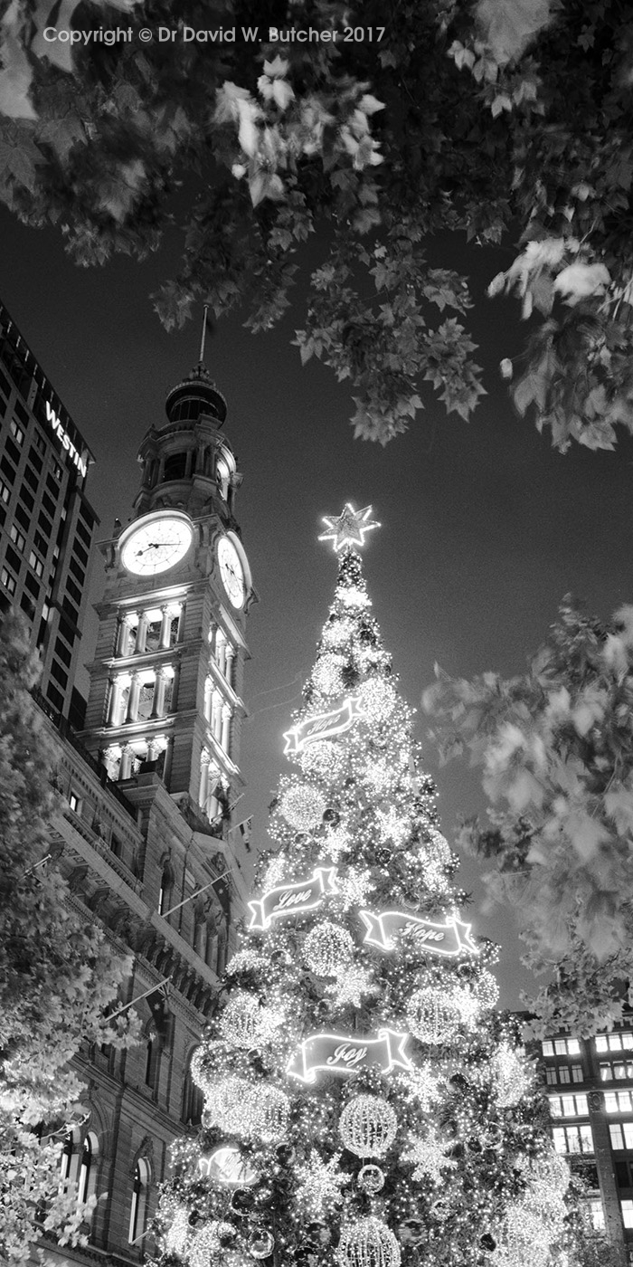 Sydney Martin Place Christmas Tree Australia