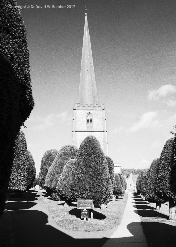 Painswick Church and Yew Trees