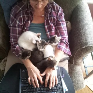 Photo of Margaret Mackey with Kittens Typing