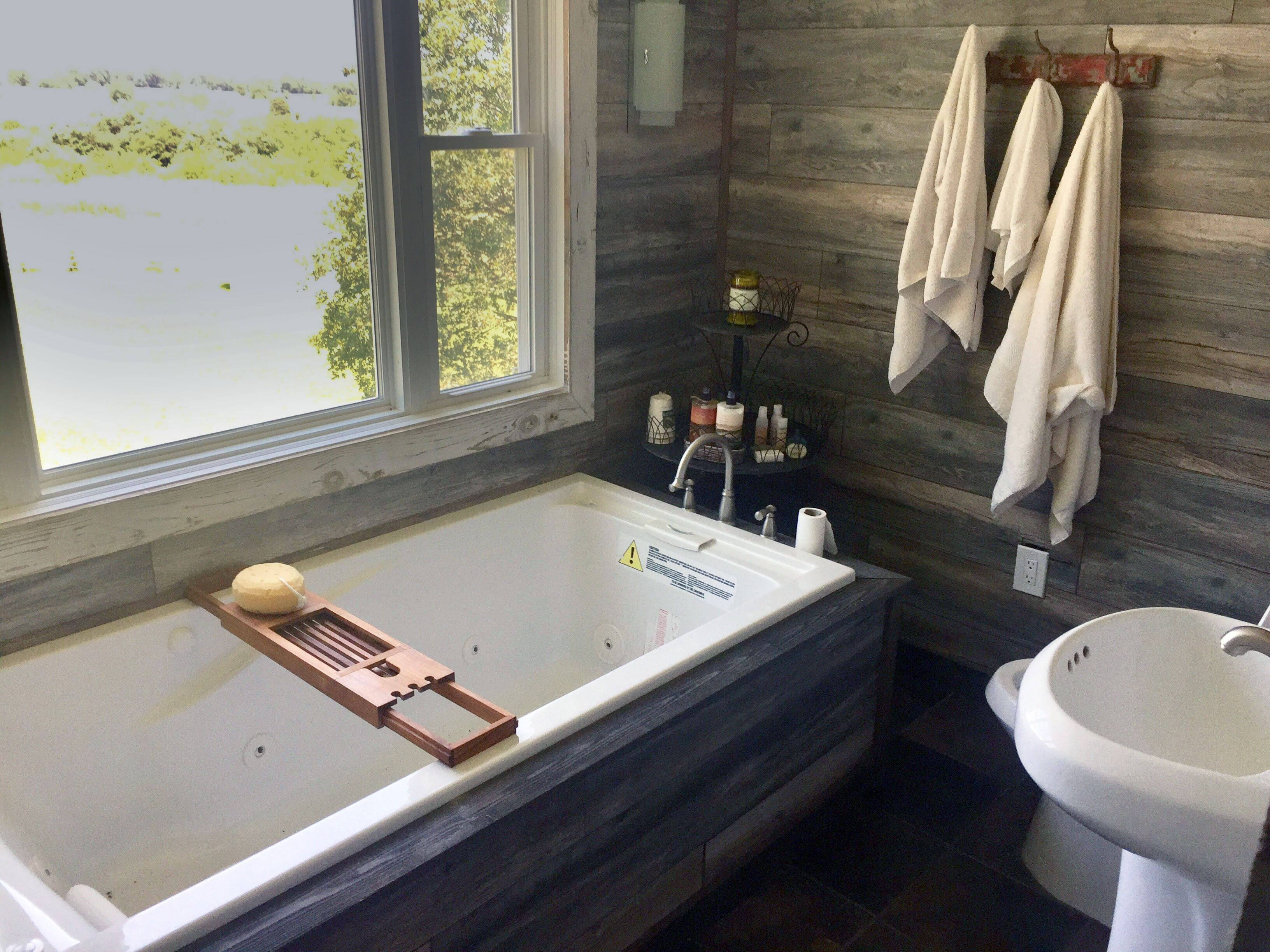 Bedroom with 2 Twin beds and Spa Bathroom with Hot tub - David Lane ...