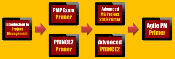 project management mastery