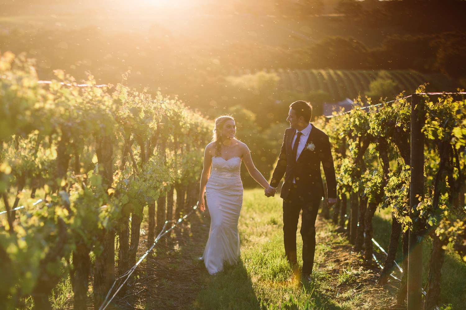 happy , relaxed bride and groom walking hand in hand through the vines at sunset in K1 winery Kuitpo