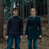harry potter and hermione deathly hallows part 1