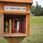 little free library in springfield