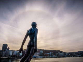 Wellington Sun Halo