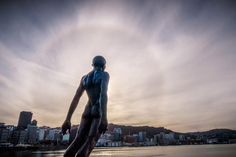 Wellington Sun Halo