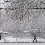 Snow St James Park London