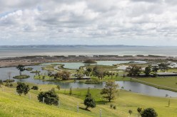 Westlake Choirs Gibbs Farm