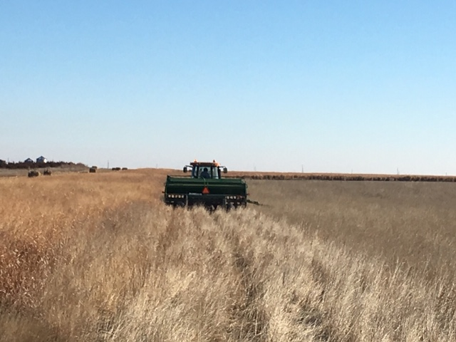 No-Till Re-Planting Does Not Hurt the CRP