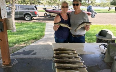 West Bend, Lake Sharpe report for May 14th, 2019