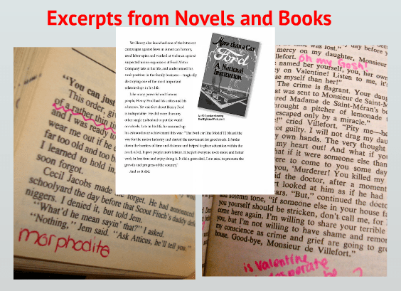 close-reading-ccss-novels-excerpts
