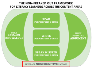 "Figure 1: Focusing on One Element of the NFO Framework for a Personal PD ""Research Sprint."" This is what I focused on."
