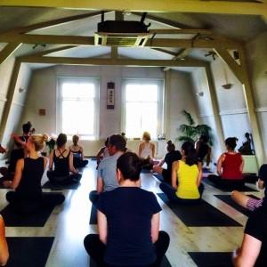 Representing my Rhodey yogis in Holland. Eka pada bakasana like it ain't no thanggggg.