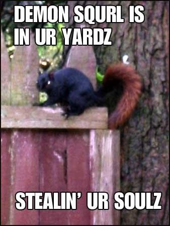 Stealin ur soulz