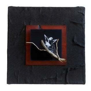 Kunstenaar David Torres