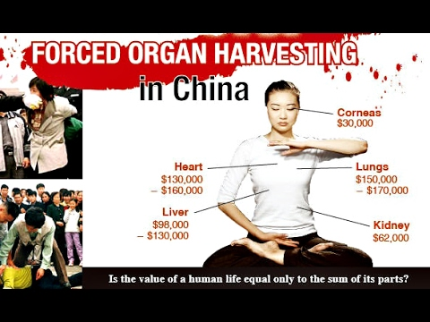 Stop Organ Harvesting In China