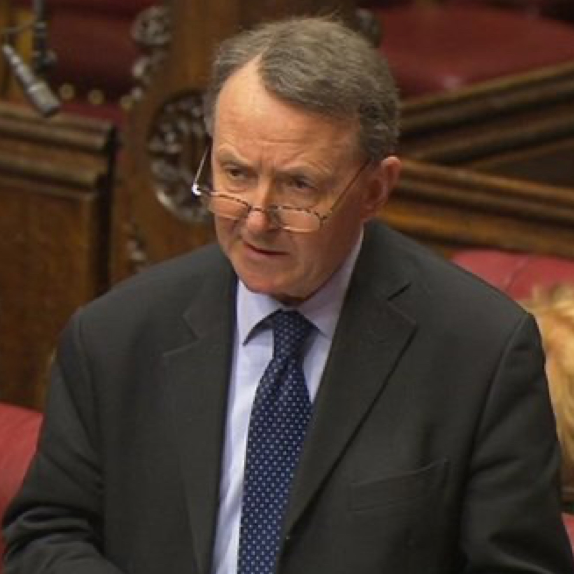 Alton speaking in the House of Lords