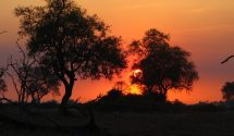 Sunset in South Luangwa
