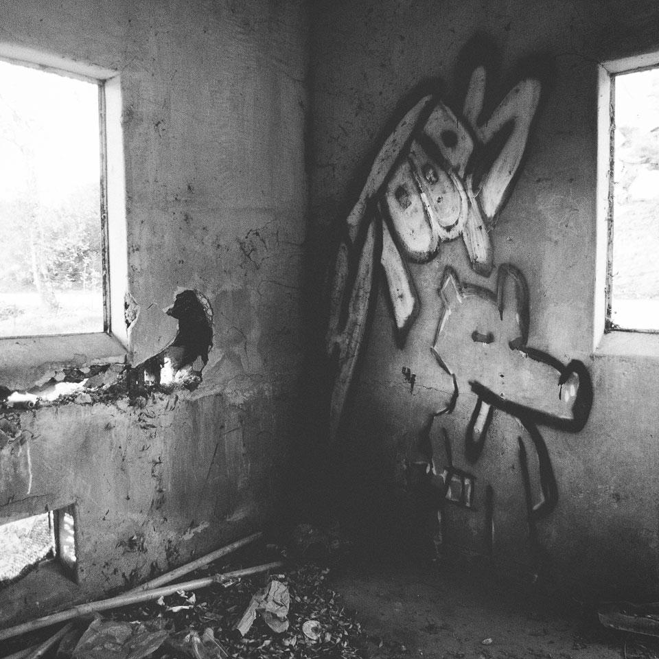 diurnal-affair-12312013