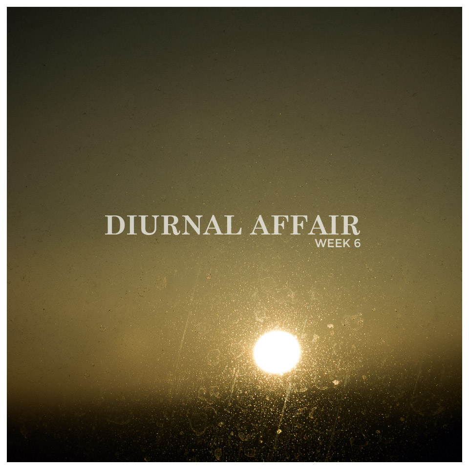 Diurnal Affair David Bernie Photography