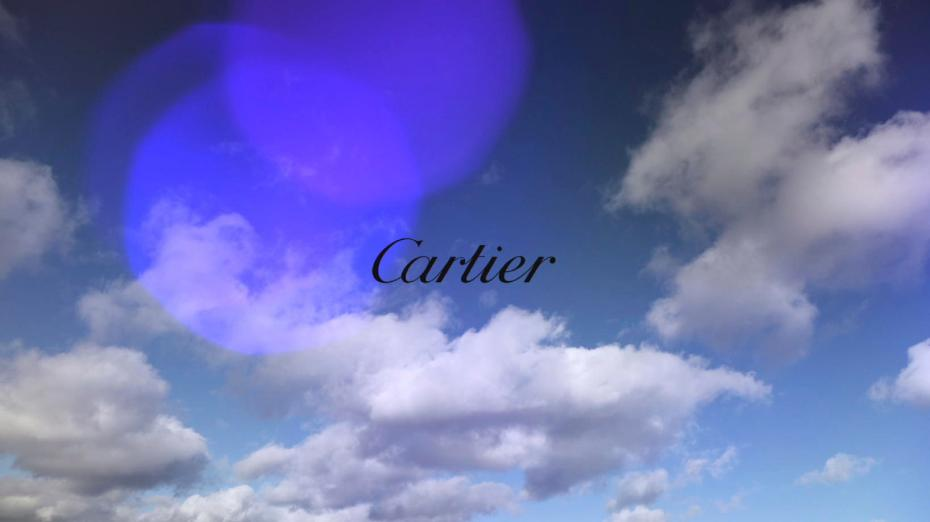Cartier CitizenK