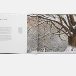 A double page spread from Hampstead Heath, London's Countryside, a completed book production project