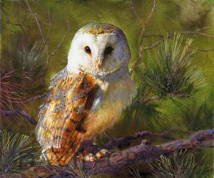 Barn Owl Oil Painting-A Celebration of Nature