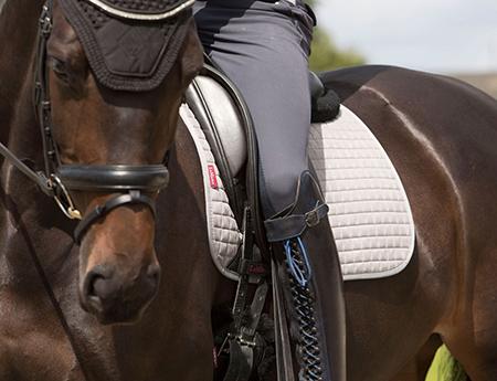 David Dyer Saddles At Frogpool Manor Farm Equestrian