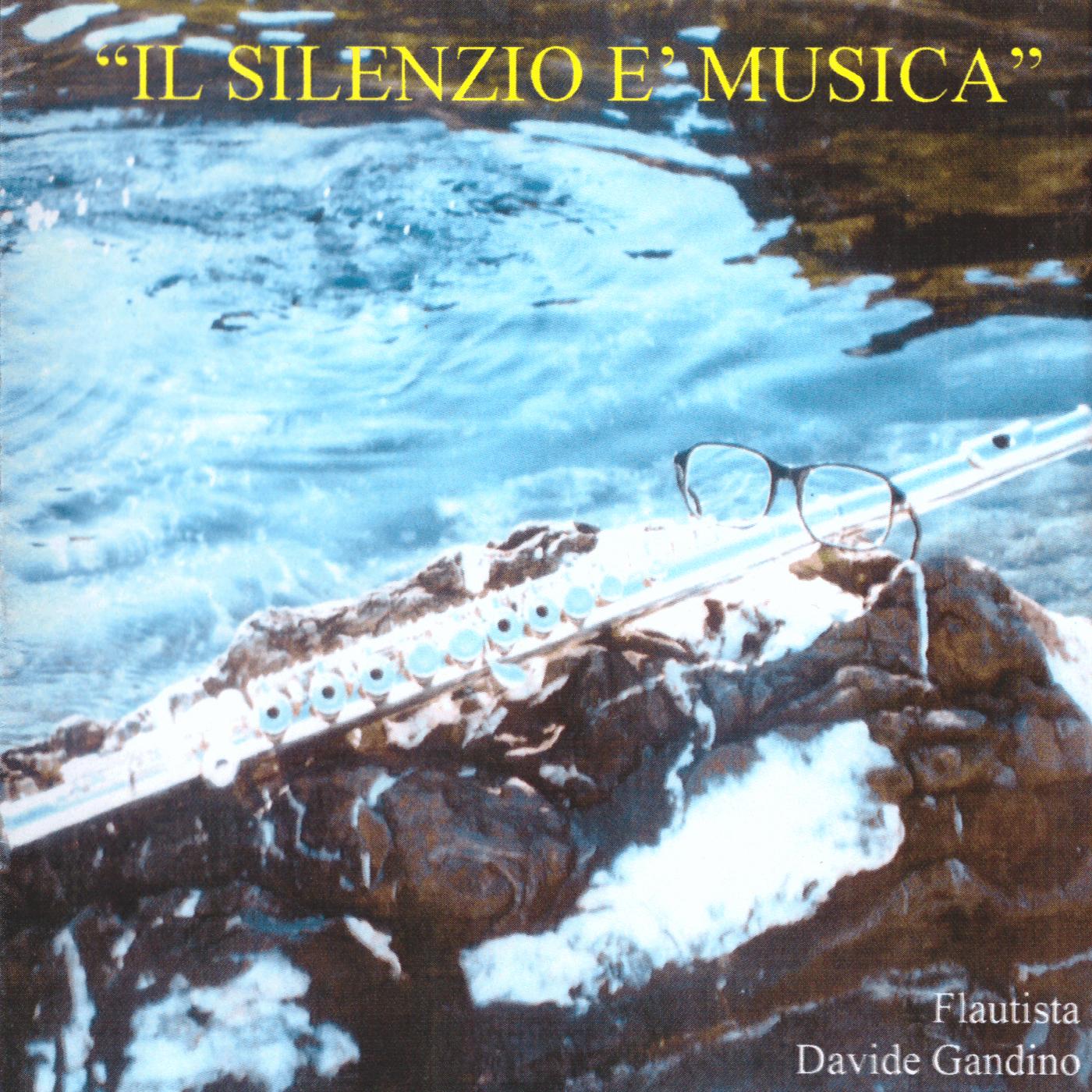 Il silenzio è musica (cover)