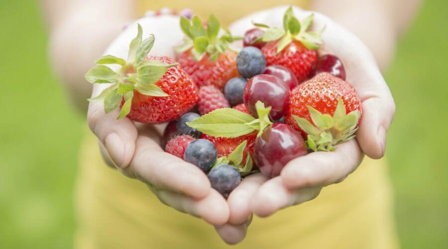 nutrición dietetica vigo