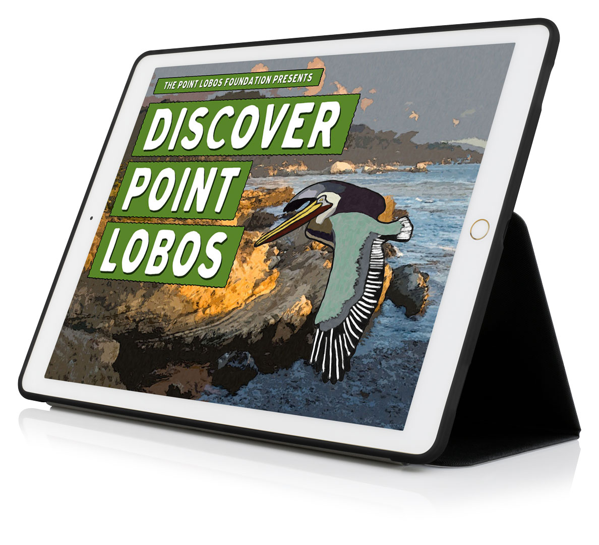 point-lobos