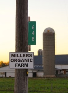 Millers Sign IMG_7105 copy
