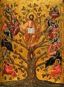 Christ the True Vine