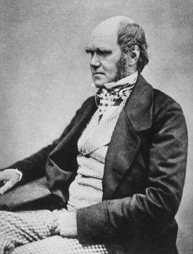 Darwin 1854