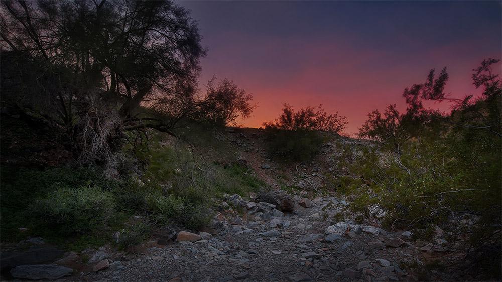 Magenta Sunrise PMR