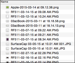 Screen Capture File Listing